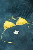 image of halter-top  - Yellow bikini top floating in pool with Pulmeria flowers in the shadow of a palm tree - JPG