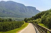 Cycle Lane Of The Adige Valley