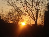 picture of brighten  - The sun in the evening - JPG
