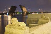 Drawn Birzhevoy Bridge In St. Petersburg