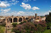 Ansicht des Forum Romanum aus dem Palatin, Rom