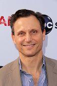 LOS ANGELES - MAY 16:  Tony Goldwyn arrives at