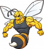 stock photo of wasp sting  - Hornet mascot - JPG