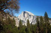 Half Dome rock in Yosemite National Park