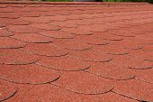 Red asphalt shingle