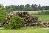 foto of hayfield  - rural scenery including a big pile of cutted boughs in Southern Germany - JPG