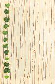Leaves Ceropegia Woodii On Wood Texture, `ice Tree`