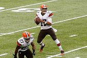 NEW YORK-DEC 22:  Cleveland Browns quarterback Jason Campbell (17) looks to pass the ball against th