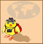 Cute chicken with a backpack and a camera in cartoon stile, vector illustration to the concept of to
