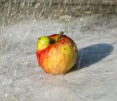 Fresh Apples With Funny Deformations