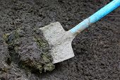 Manure With Spade