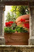 Flowers on medieval stairs in the village of Lucignano d'Asso in Tuscany Italy