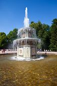 The Roman Fountains. Petrodvorets. Petersburg