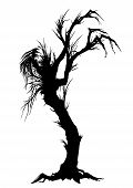 Sinister Tree Silhouette