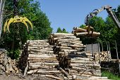 stock photo of logging truck  - Crane claw moving and big stack of logs near truck trailer - JPG