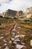 Alpine Hiking Trail
