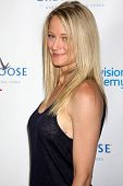 LOS ANGELES - JUN 1:  Teri Polo at the 7th Annual Television Academy Honors at SLS Hotel on June 1,