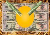 Nest Egg With Money Emerging