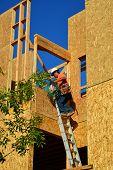 Workman on Ladder
