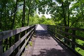 image of trestle bridge  - A bridge built on an abandon trestle on the Virginia Creeper Trail in Southwest Virginia - JPG