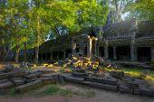 Sunrise over Ta Phrom