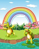 Illustration of the two playful turtles at the pond with a rainbow in the sky