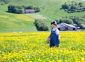 image of dungarees  - A Baby Girl In Dungarees With A Soft Toy In Her Hands Walking In The Field Full Of Buttercups - JPG
