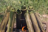 Glutinous rice roasted in bamboo joints on a campfire, Thai food.