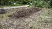 stock photo of loam  - pile of natural manure fertilizer made from cow excrement - JPG