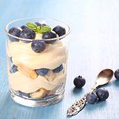 Fresh Blueberry Layered Desert With Mascarpone Cream And Cookies