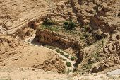 image of jericho  - Goats and water canal in Wadi Qelt Judean Desert Israel  - JPG