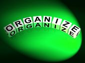 Organize Dice Represent Organization Management And Established