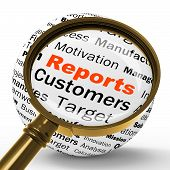 Reports Magnifier Definition Means Statistical Diagram Or Compan