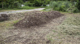 pic of excrement  - pile of natural manure fertilizer made from cow excrement - JPG