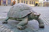 Bronze Turtle In Olomouc, Czech Republic