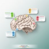 foto of web template  - Modern infographics paper brain template for 4 options - JPG