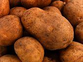 Tubers  Potato  Vegetables