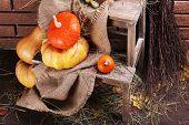 Pumpkins on wooden ladder on floor on brick wall background