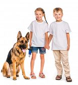 happy kids in white t-shirts with shepherd dog isolated