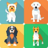 image of labradors  - Set icon flat design dogs different breed - JPG
