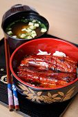 Unagi with Rice (Unagi-don)