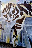Street art Montreal cat