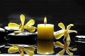Yellow orchid with black stones with candle reflection