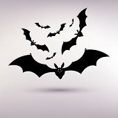 halloween bat vector background on the gray background.