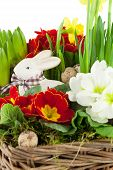 Easter Bunny With Spring Flowers
