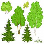 Plants, set
