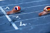 Snails Race Metaphor About France Against Germany