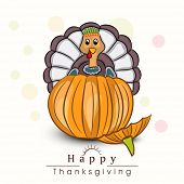 Cute Thanksgiving turkey sitting on pumpkin for Happy Thanksgiving Day celebration.