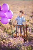 Boy with purple balloons in a field of lavender.