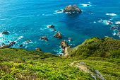 Постер, плакат: Ocean Shore Coastal California